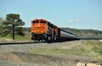 BNSF 8470 South
