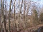 GTW 5952 through the trees again