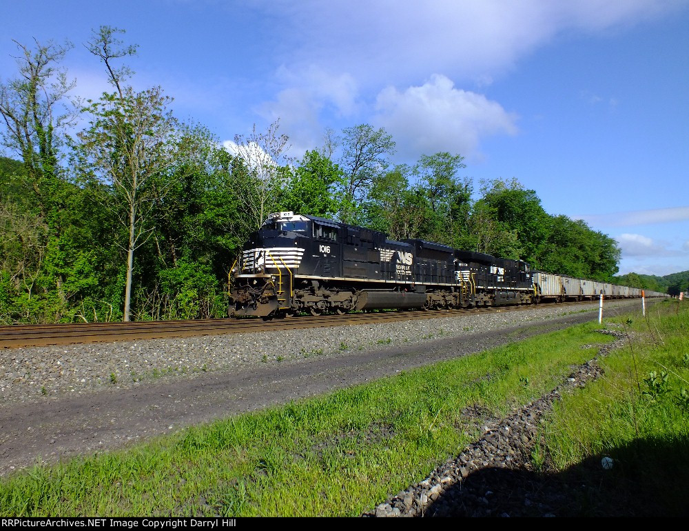 NS 1016 leading a coal drag