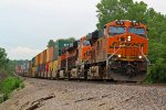 BNSF 7810 Leads a EB stack train up hill!