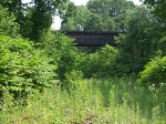 Abandoned Railroad Trestle Over Abandoned Tracks
