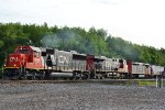 CN 5419