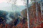 RY-2 in autumn