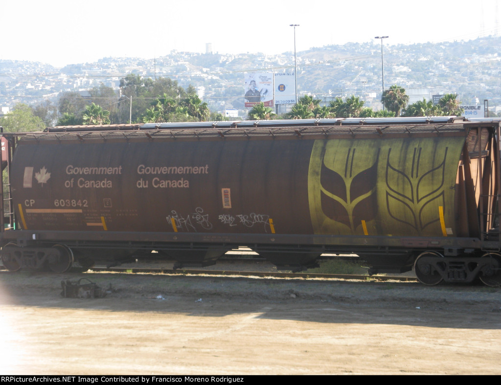 CP 603842 Covered Hopper in Tijuana