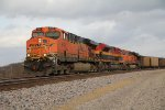 BNSF 6101 And Co