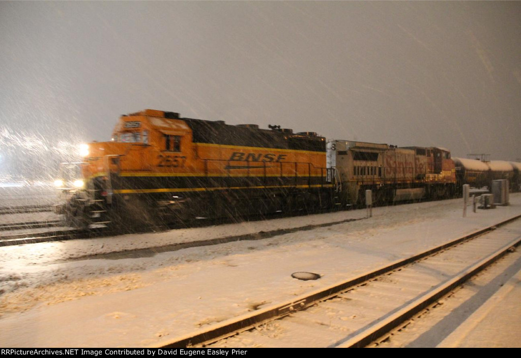 Switcher In The Snow