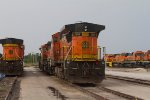 BNSF5503, BNSF538, BNSF8606, BNSF8635, BNSF530, DGNO3368 and others  in the yard