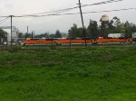 BNSF EMD Locomotives in Ferrovalle Mexico
