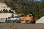 BNSF6085 and BNSF9597