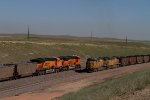 BNSF9143, BNSF6067, UP6654 and UP5690