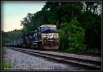 NS 9-40CW 9923 leads 819