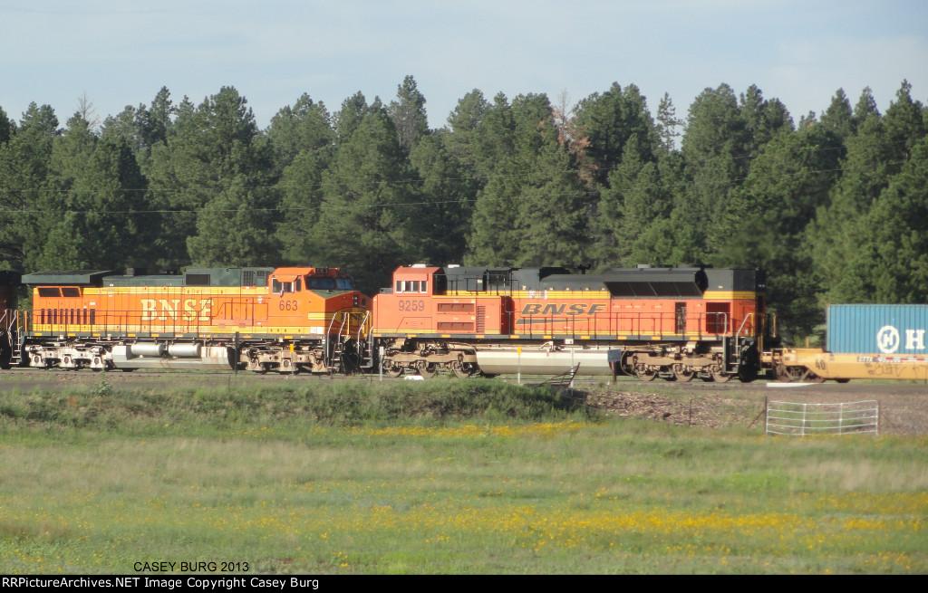 BNSF 9259, BNSF 663