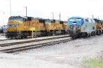 Blue Among Armour Yellow