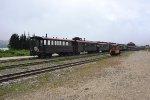 WP&Y Diesel Excursion Train
