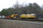NS #981 hauls a brand new UP Plasser American Set & 2 Transformers