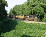 NS 153 clearing the kudzu