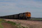 BNSF6382 and KCS3952