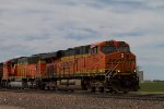 BNSF6284 and BNSF9993