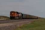BNSF9094 and BNSF9408