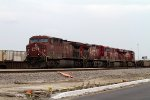 CP9715, CP9683, CP8746 and CP4516