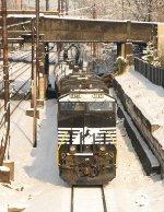 NS 8146 65W/CA-05