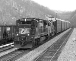 NS 8596