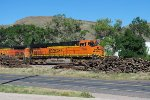 BNSF 7366 Point on East Bound Beer Train