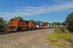 BNSF 7311 Rolls a WB stack train around a sweeping curve!