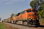BNSF 5817 Southbound At East Goshen