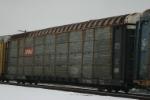 CP 556113