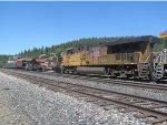 UP 5382 Trails on Rail Train