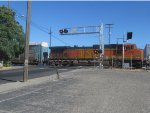 Dash 9 Trails on Autorack Train