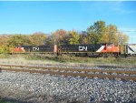 CN 8946 and CN 2288