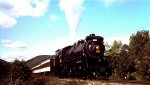 Steamtown Excursion