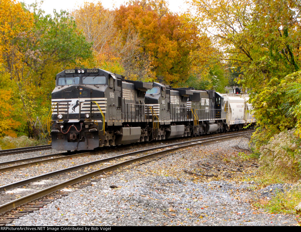 NS 9066, 9401, and 6648