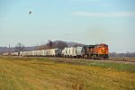 A Sb freight lead by BNSF 4655 scares a bird off.