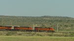 BNSF 6707 and 7142