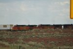 BNSF 4520 and 4589