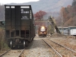 NS P59 through T&S Hardwoods