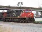 CN 2575