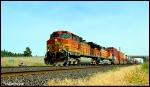 BNSF 4343