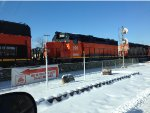 CN 5245 and BLE 866