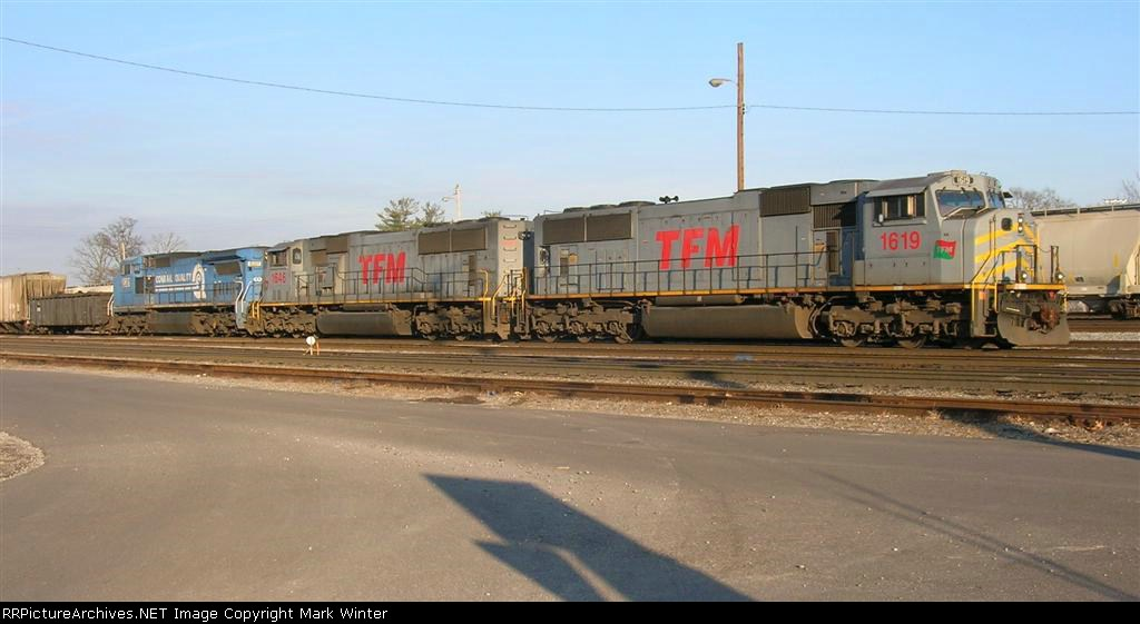 TFM 1619, TFM 1646, and NS 8381 sitting in the yard,