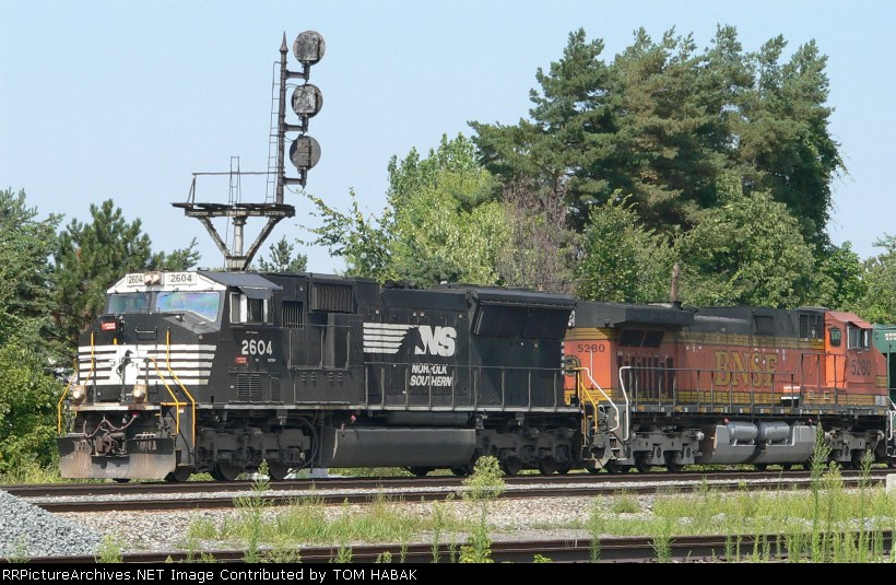 NS 2604