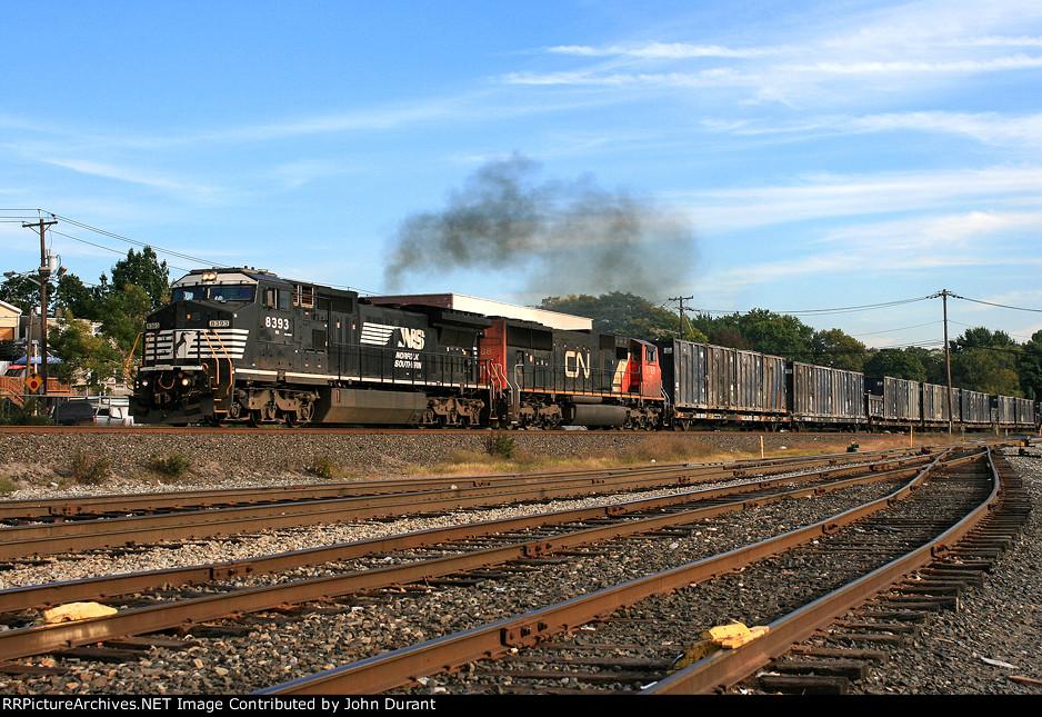 NS 8393 on Q-710