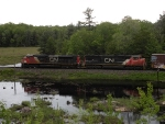 Southbound CN freight reflected in a pond.