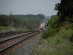 Long telephoto shot of a westbound CN one unit wonder intermodal approaching Shannonville Road.