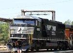 NS 6952