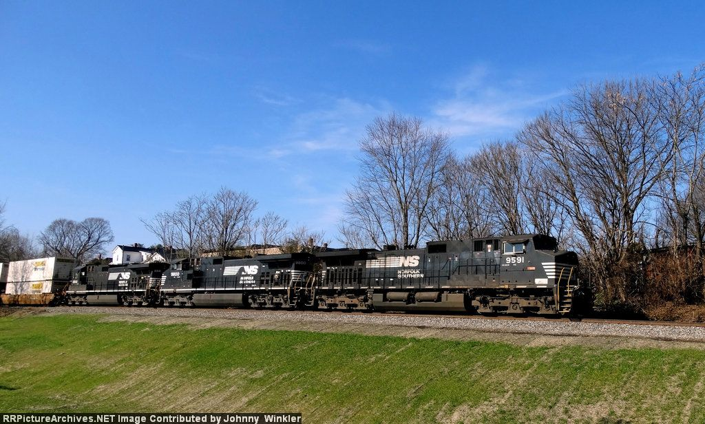 NS 9591 leads NS 202
