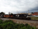 NS 9788 leads NS 202